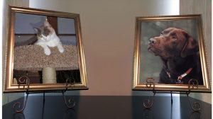 pet trust photo